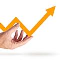 Franchise: les secteurs porteurs en2013