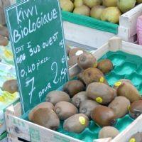 Les commerces de fruits et légumes ont augmenté leurs ventes de 2% en 2012