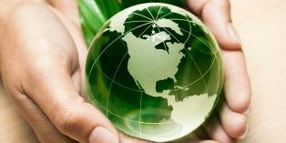 """""""Végétal et PME"""", un appel à projets pour financer des entreprises innovantes des Pays de la Loire"""