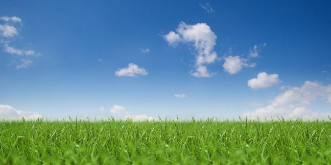 Le gouvernement lance un incubateur pour les start-up de la Green Tech