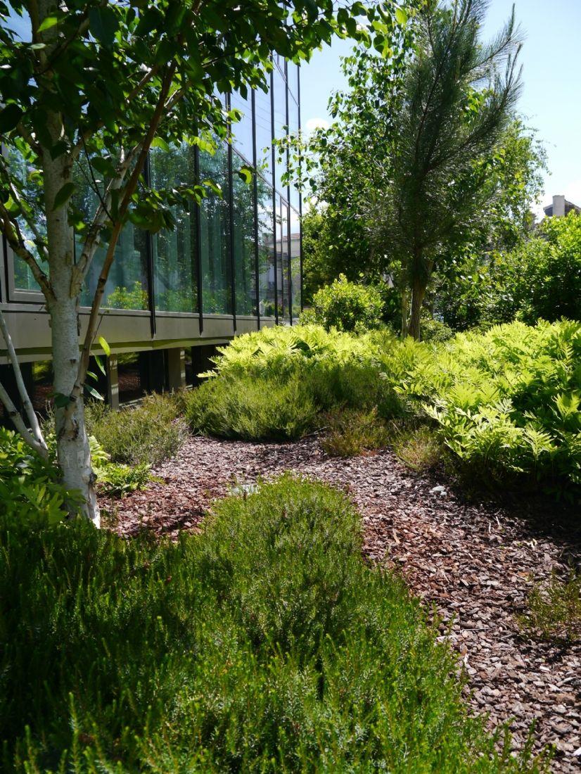 La tpe d 39 am nagement de jardins vermont triple son chiffre for Entreprise amenagement jardin