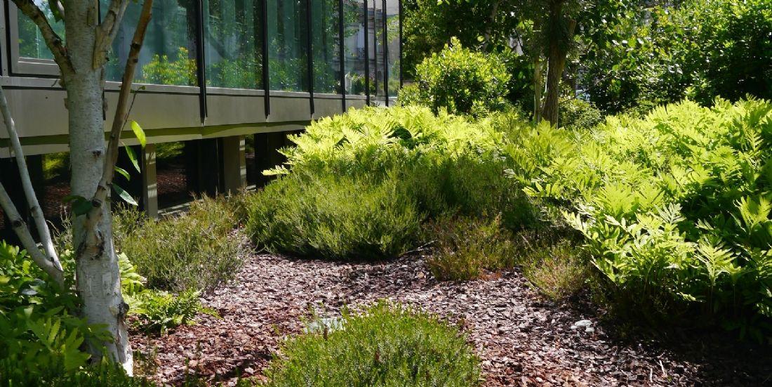 [Étude de cas] Une TPE d'aménagement de jardins triple son chiffre d'affaires en trois ans