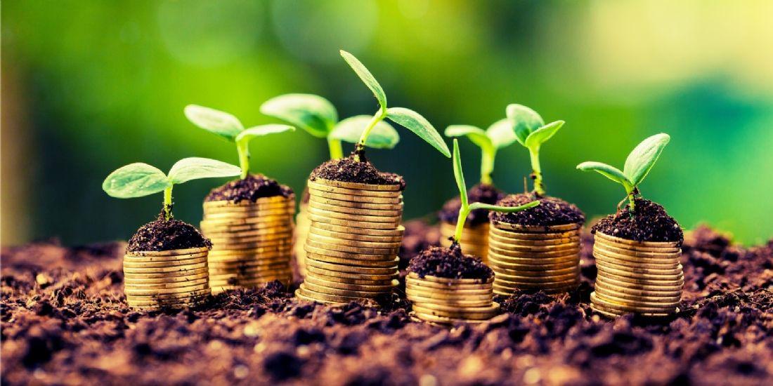Comment investir sa trésorerie d'entreprise ?