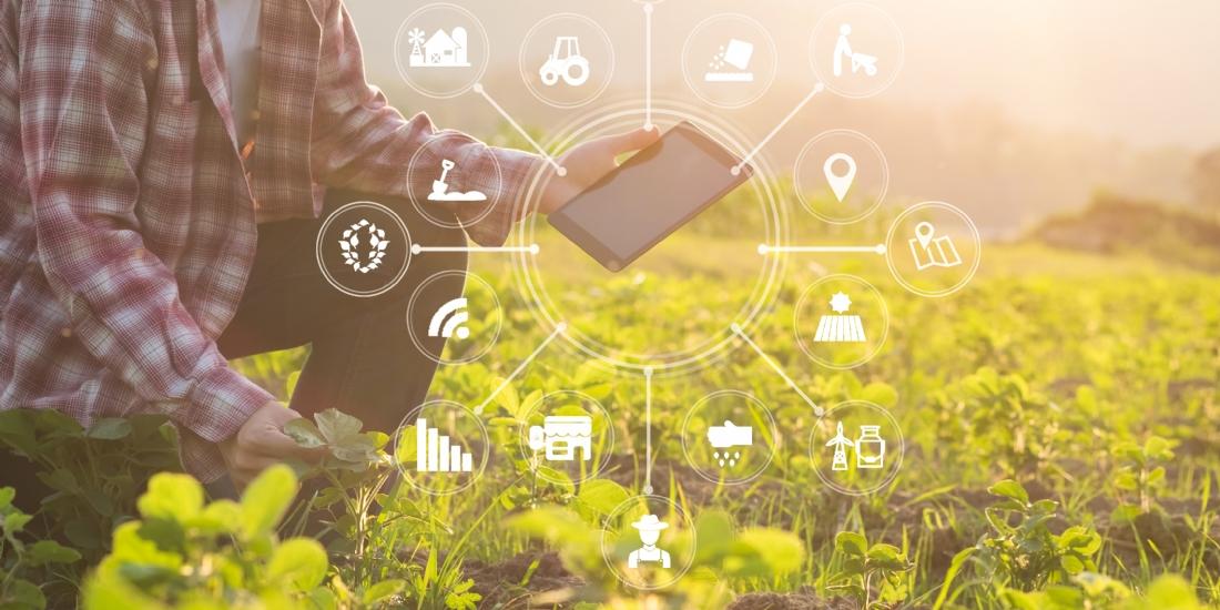 Un partenariat pour soutenir la transformation digitale des entreprises de l'agro-alimentaire