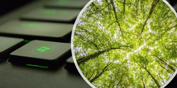 Numérique : 10 astuces pour réduire son empreinte numérique