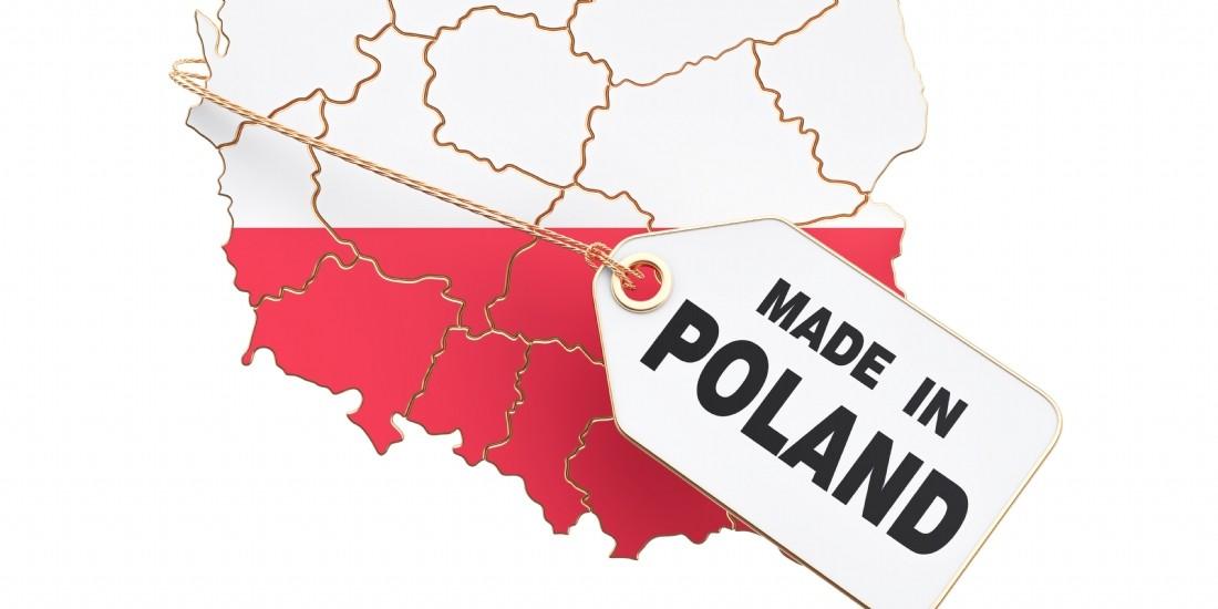 ' Investir et réussir son business en Pologne ' : Quelques conseils pratiques