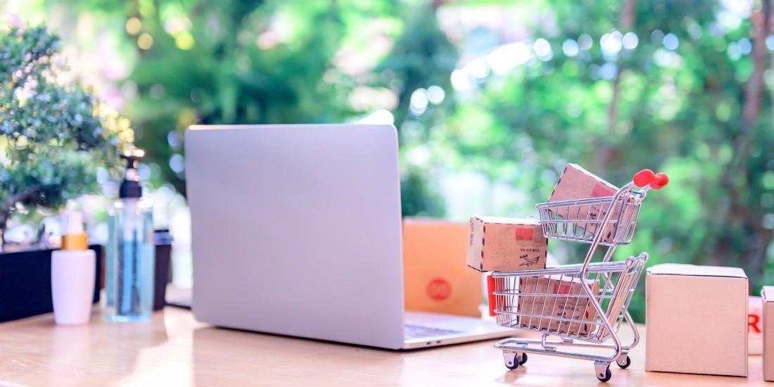 Vers une hausse pérenne des achats en ligne