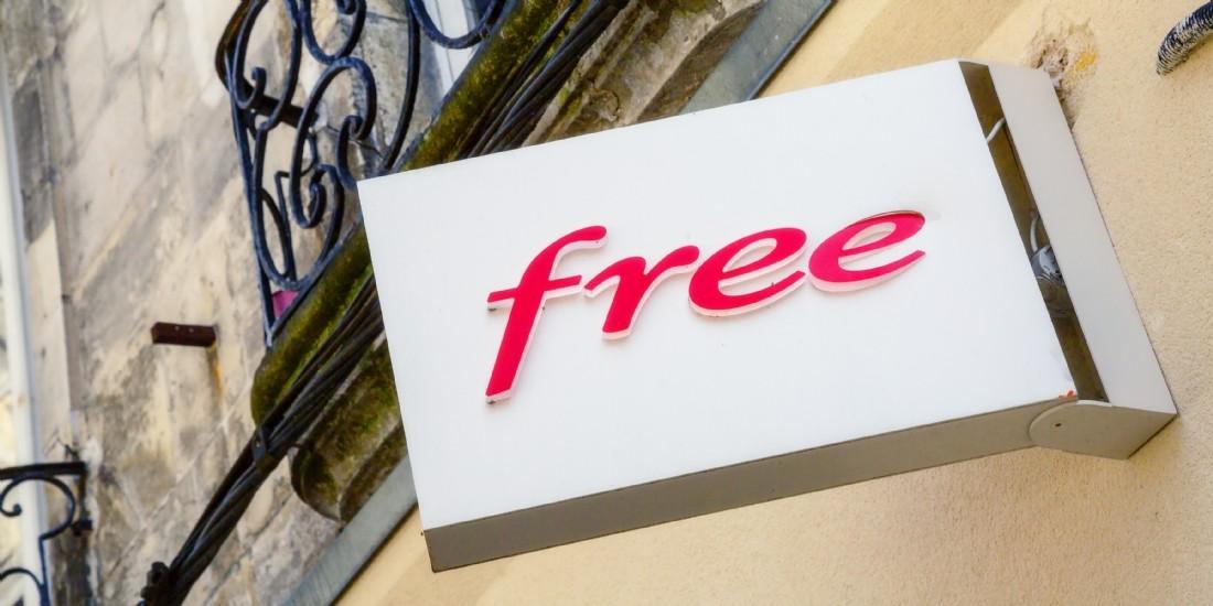 Free lance une offre pour les professionnels