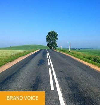 TPE/PME et RSE, un duo gagnant ? | Dossier : Itinéraire vert