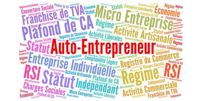 Les points forts et les faiblesses du statut auto-entrepreneur