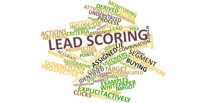 Comment définir le Lead Scoring ?